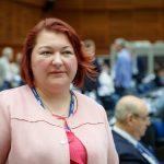 Fidesz MEP: Political Pressure, Attacks on Transcarpathian Hungarians 'Unacceptable'