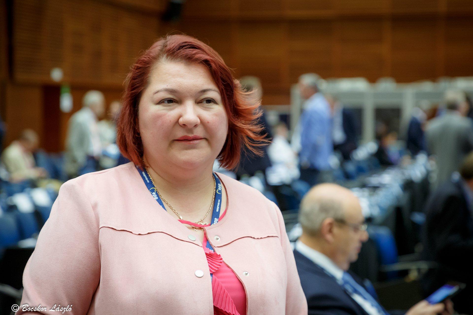 Fidesz MEP Slams Ukraine's 'Anti-Hungarian' Election Campaign post's picture