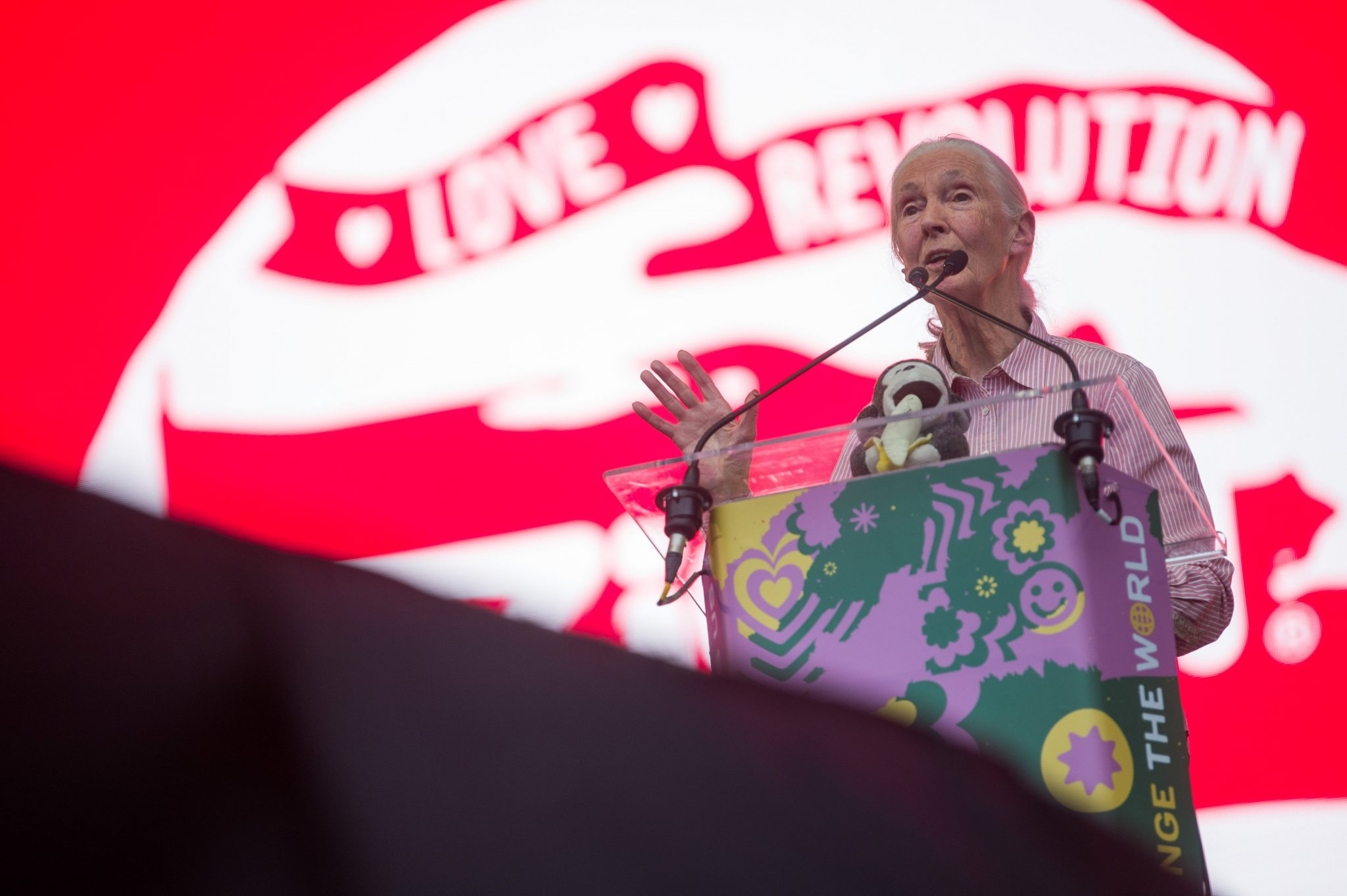 Sziget: Jane Goodall Inspires Festival-Goers to Change with Impressive Speech post's picture