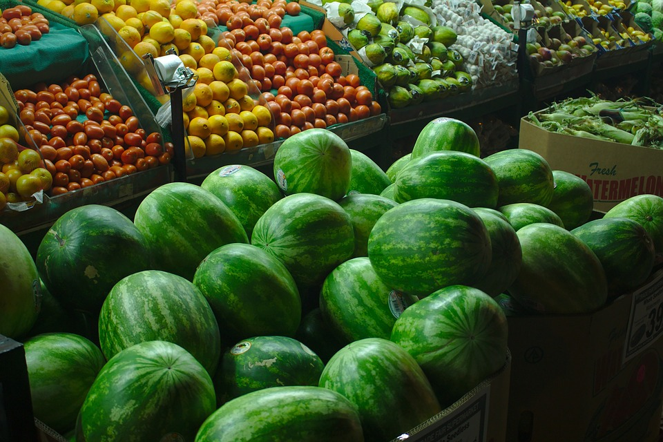 Extra Low Watermelon Prices Tree Hungarian Farmers post's picture