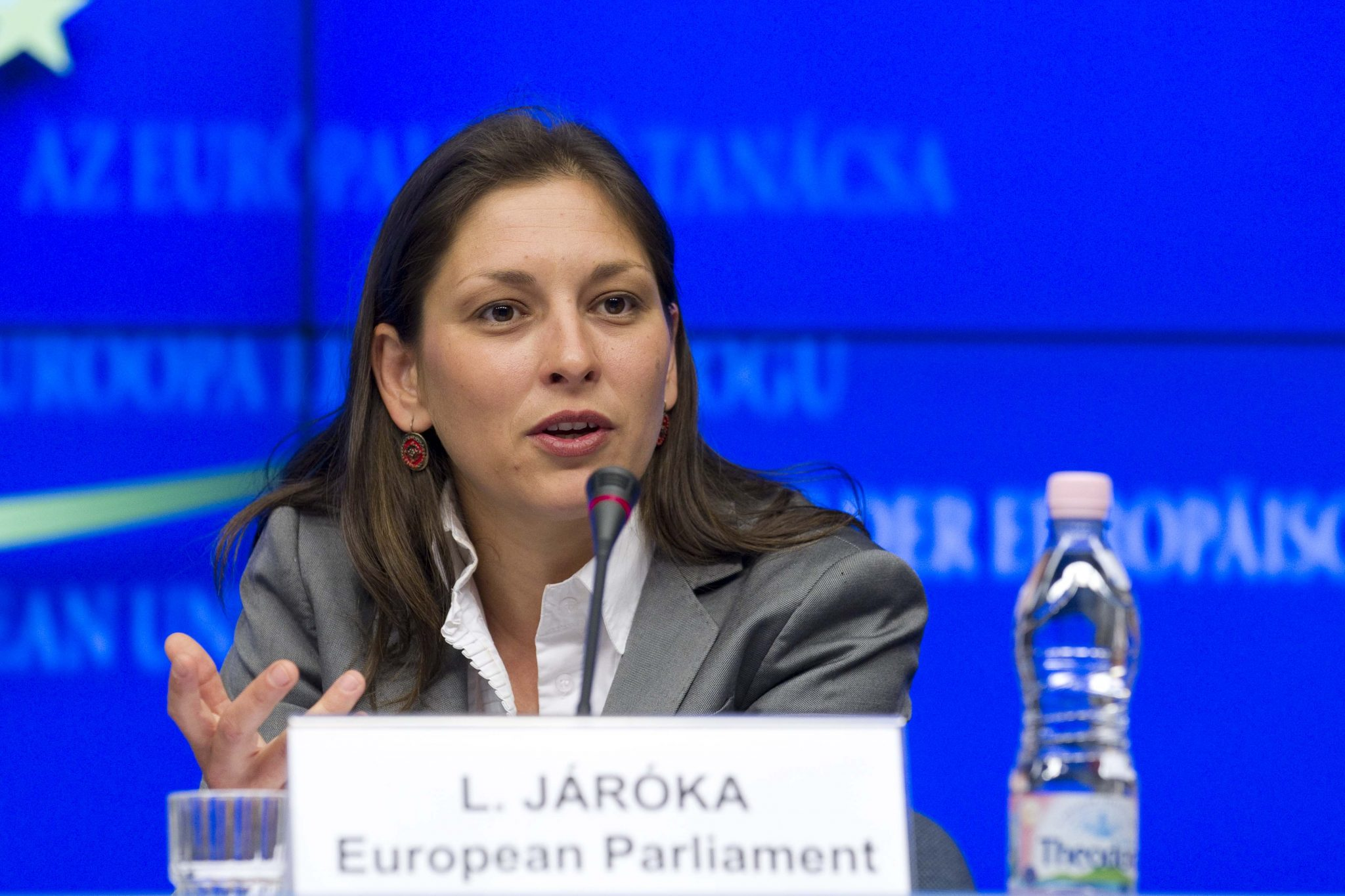 Fidesz MEP on Roma Holocaust: Action against Discrimination of Minorities 'Duty' post's picture