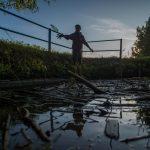 Áder Writes to Ukraine, Romania Counterparts over River Waste