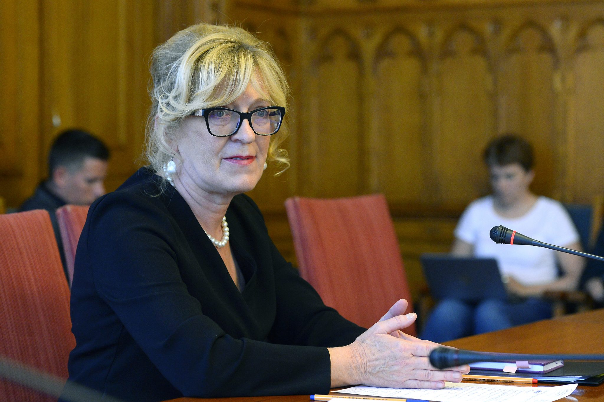 Parlt Cttee Backs Handó for Constitutional Court Judge post's picture