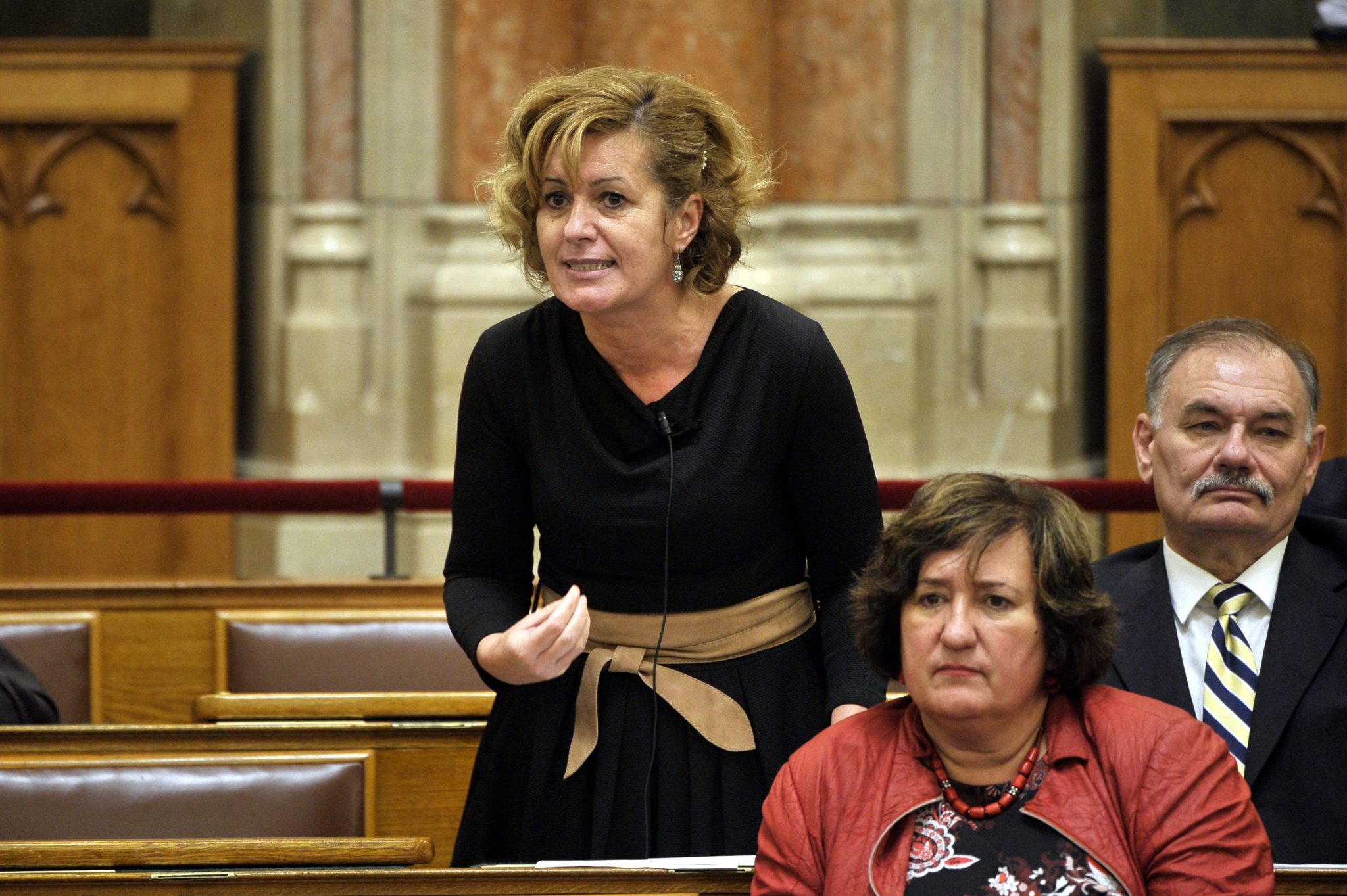 Coronavirus: Socialists Call for Parliament Probe into Govt's Response Measures post's picture