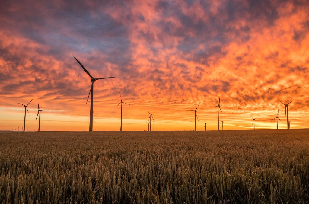 LMP Proposes Lifting Ban on Wind Farm Construction post's picture