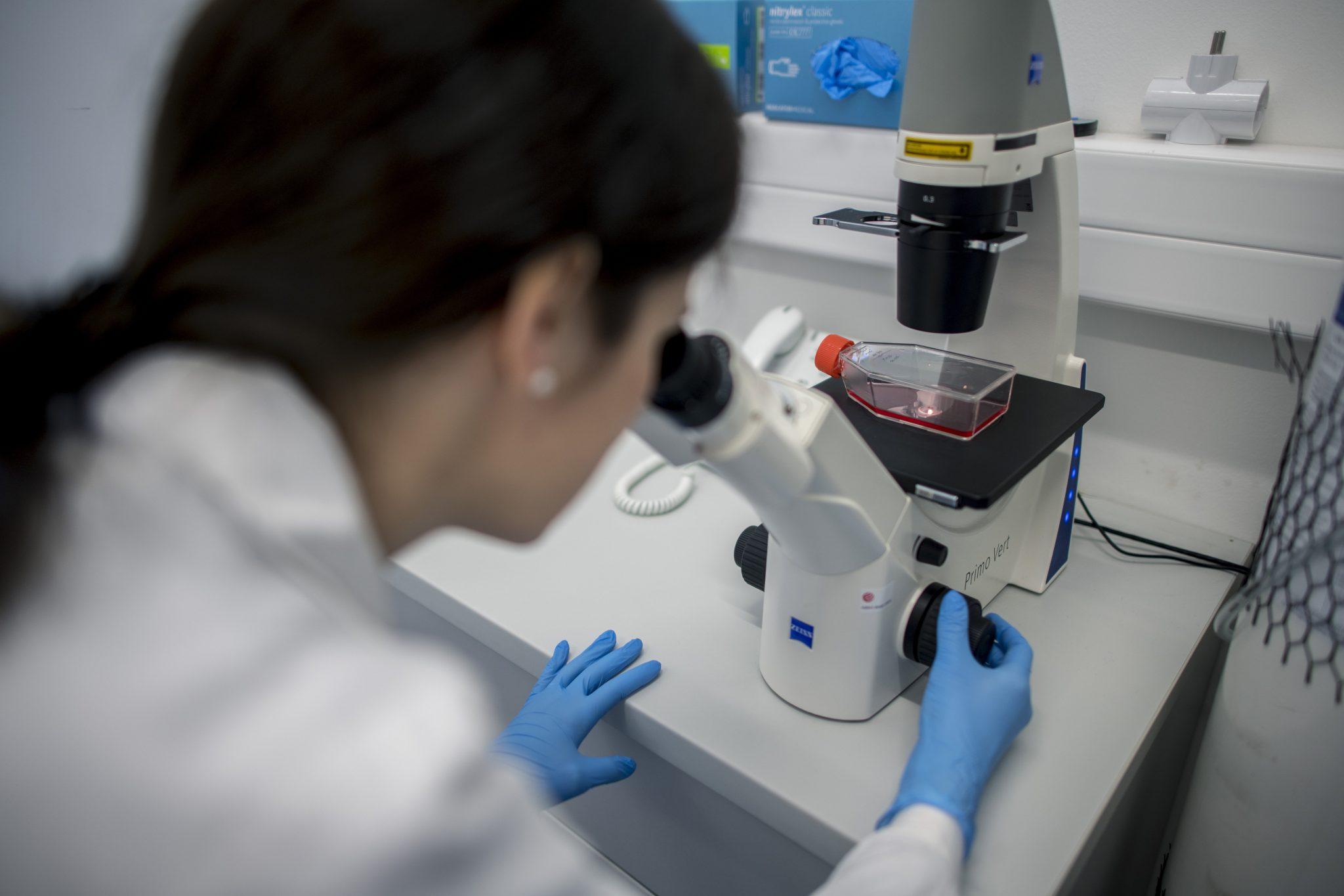 Mutation Helps Coronavirus Spread, says Virologist post's picture