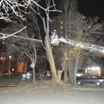 Wind Speed Record in Budapest, Storm Uproots Trees, Damages Power Lines across Hungary