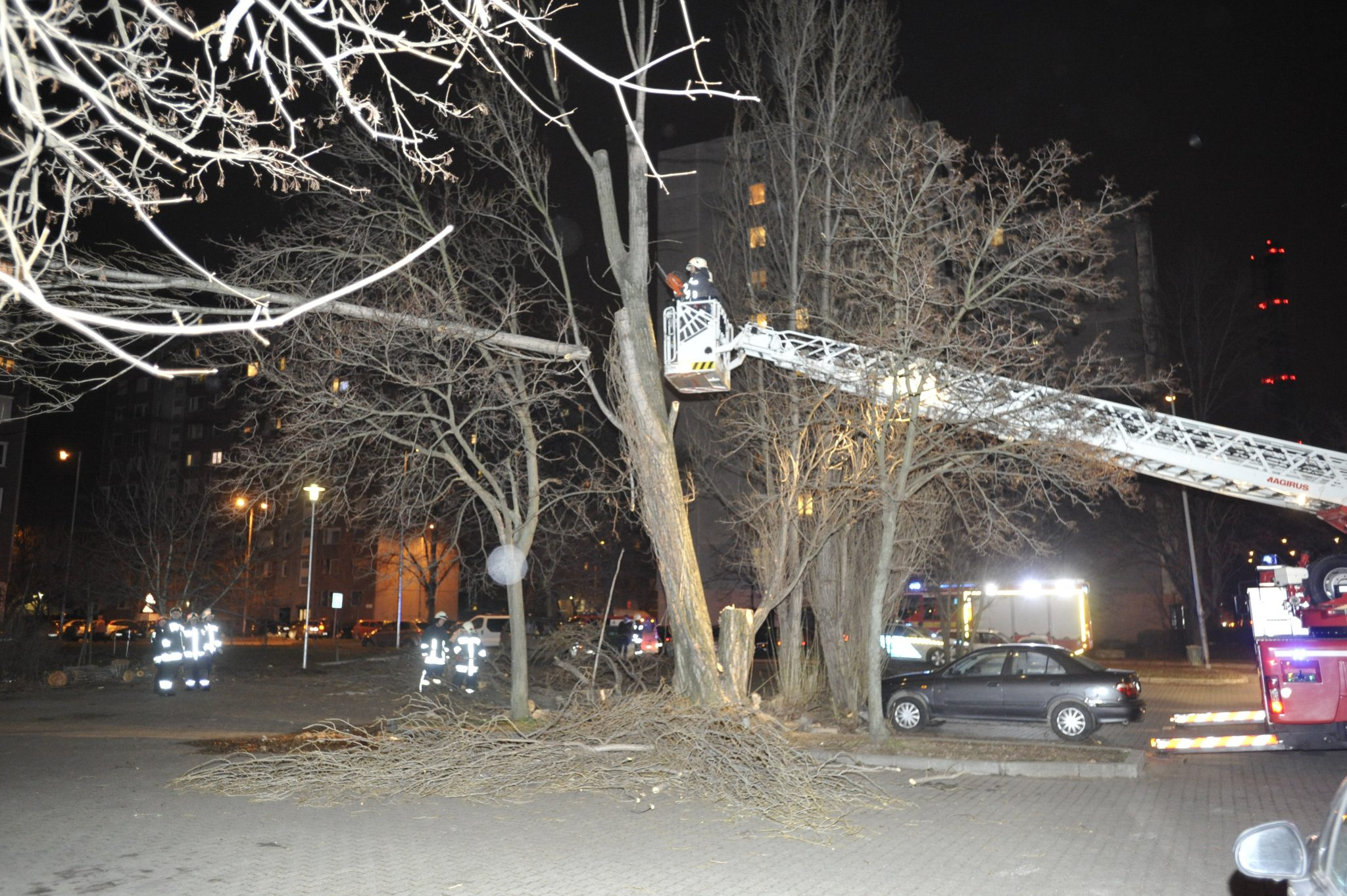 Wind Speed Record in Budapest, Storm Uproots Trees, Damages Power Lines across Hungary post's picture