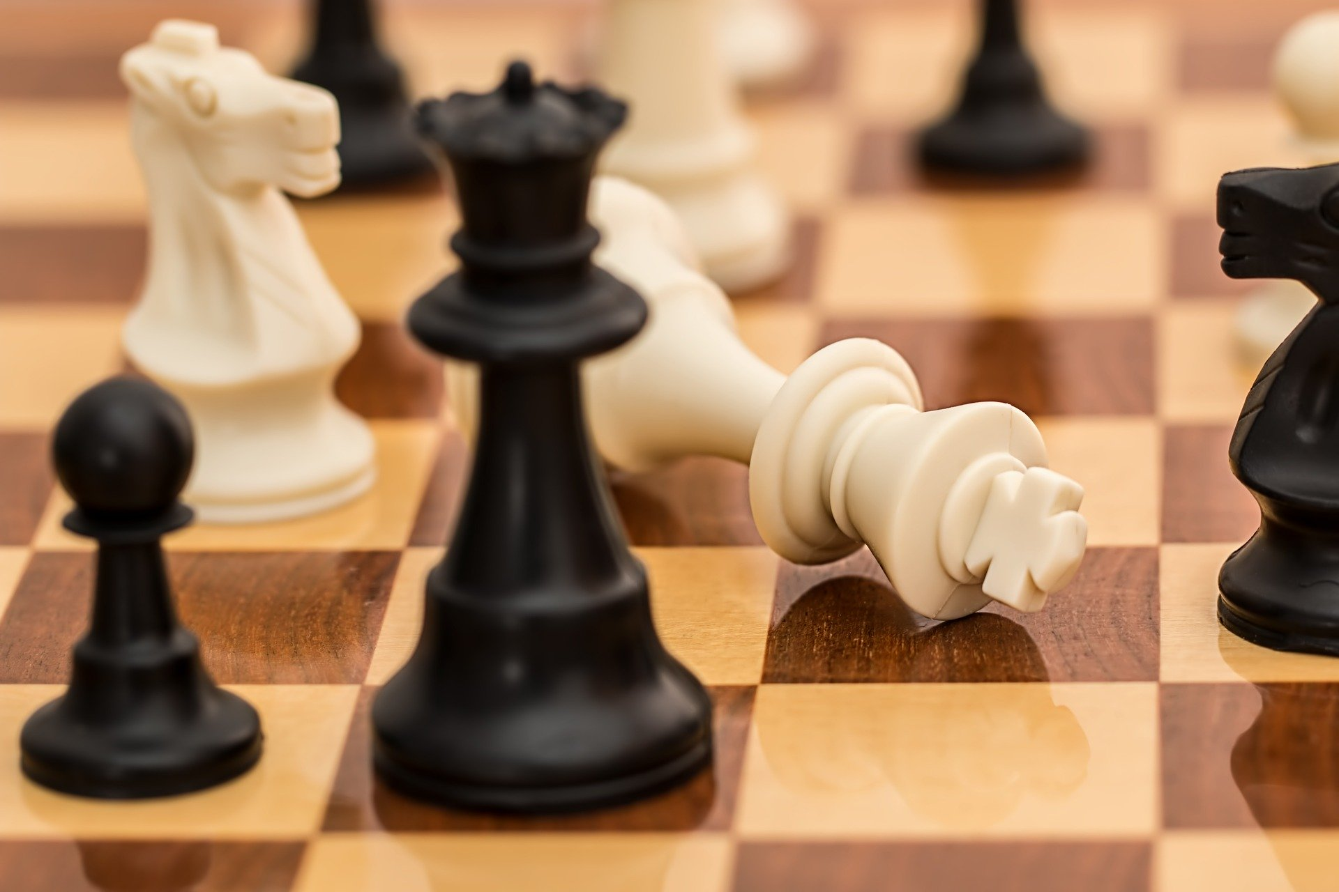 Vast Majority of Hungarians in Favour of Hungary Hosting Chess Olympiad post's picture