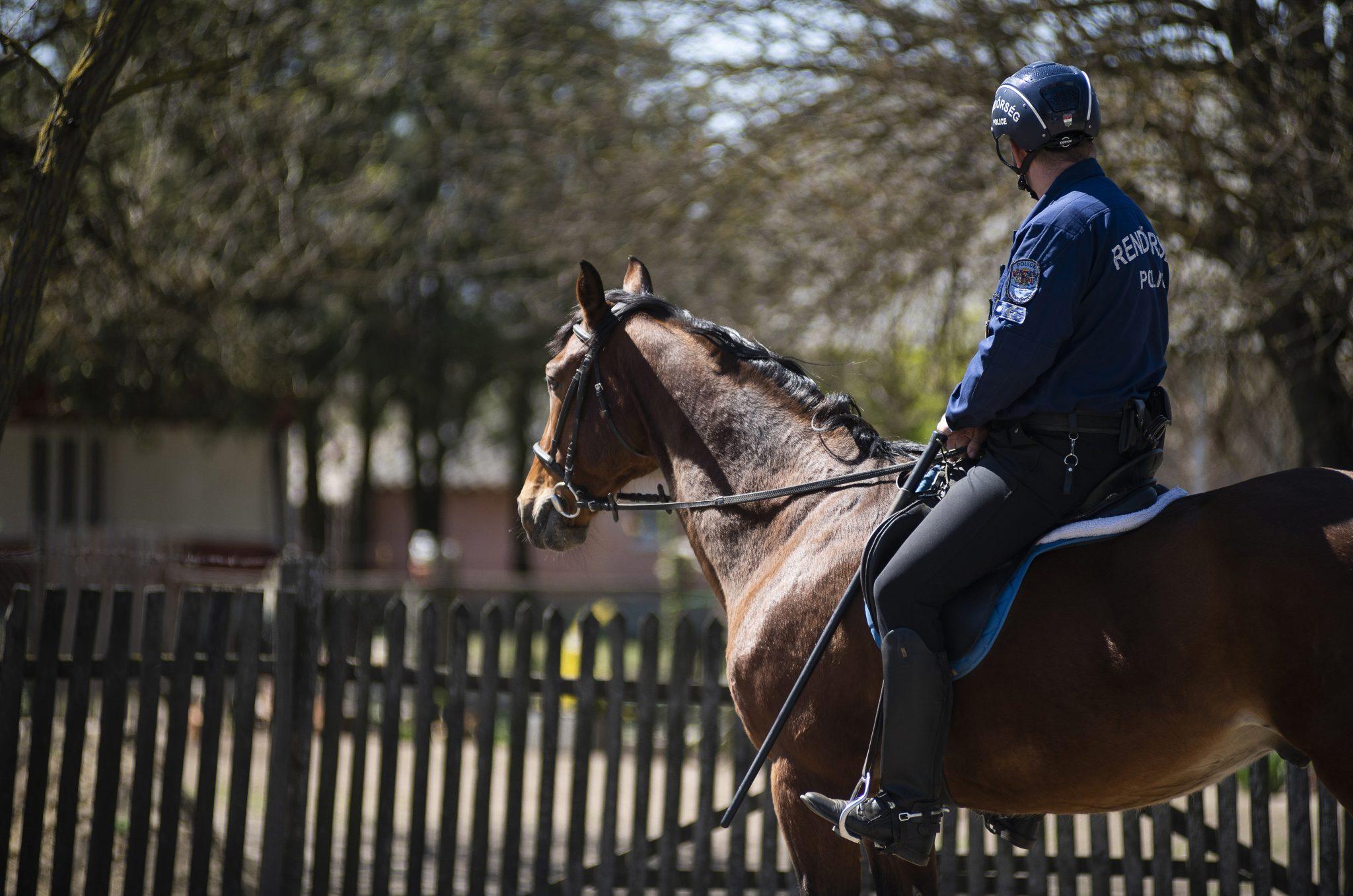 Coronavirus: Equestrian Patrol Help in the Hungarian Farmlands – Photo Gallery! post's picture