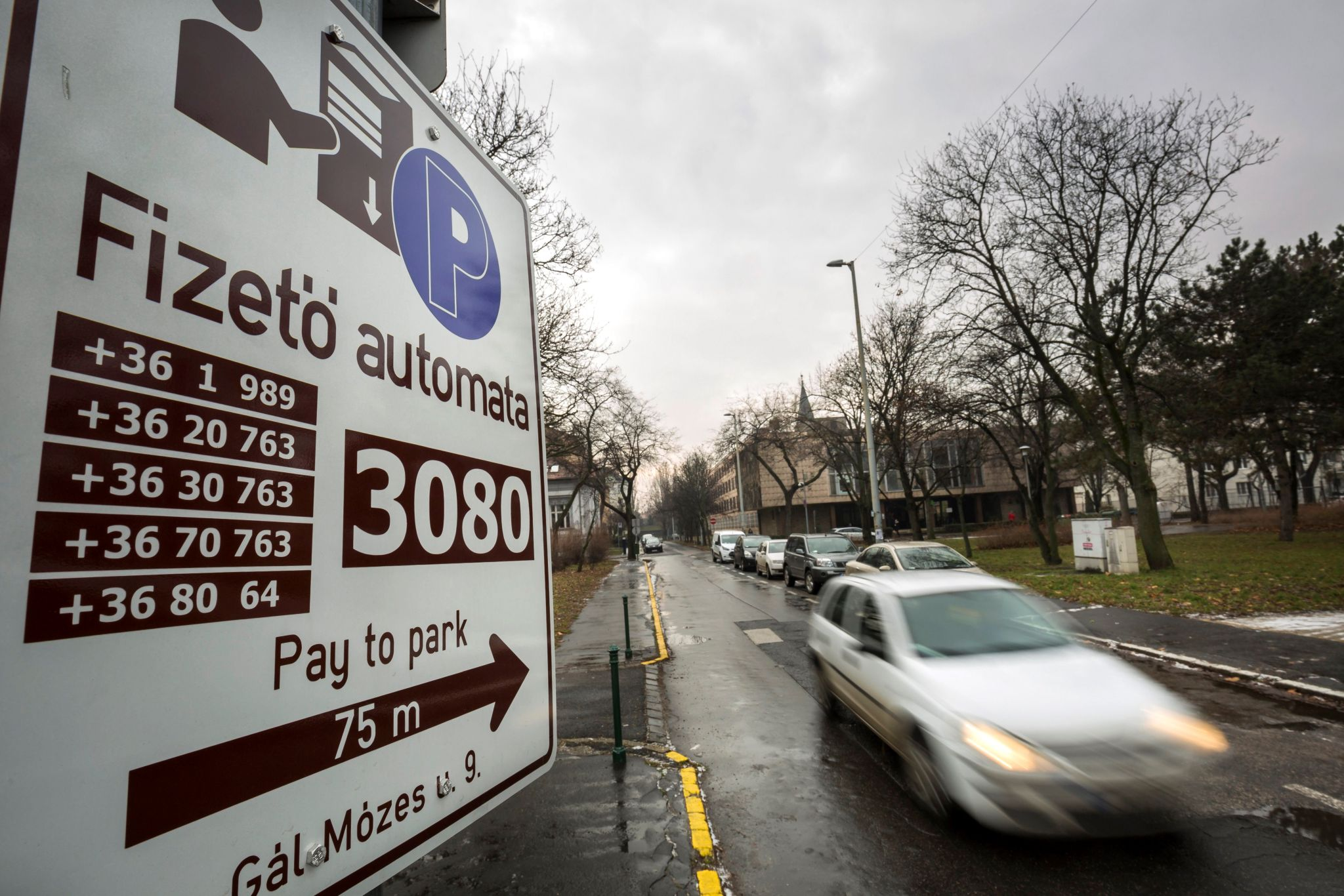 Supreme Court Annuls Parts of Budapest Decree on Parking post's picture