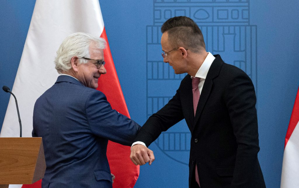 Szijjártó-Czaputowicz Meeting: Hungary and Poland 'Not Only Friends but Strategic Allies' post's picture