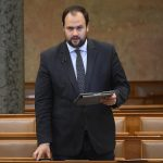 Ruling Party Spox: Left-wing 'Trying to Thwart People Having Their Say'