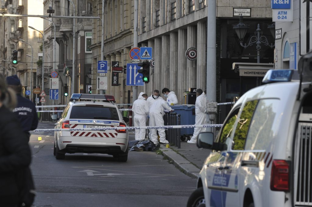 Double Homicide in Budapest City Center post's picture