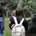 Budapest Zoo Joins EC Biodiversity Initiative