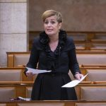 MSZP: Gov't 'Lying' about Hungary Epidemic