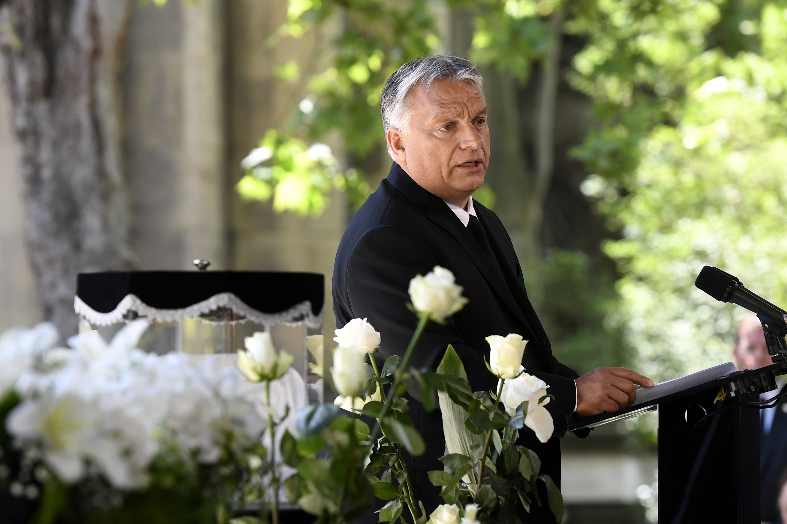 Orbán: Art and Politics Related Professions post's picture