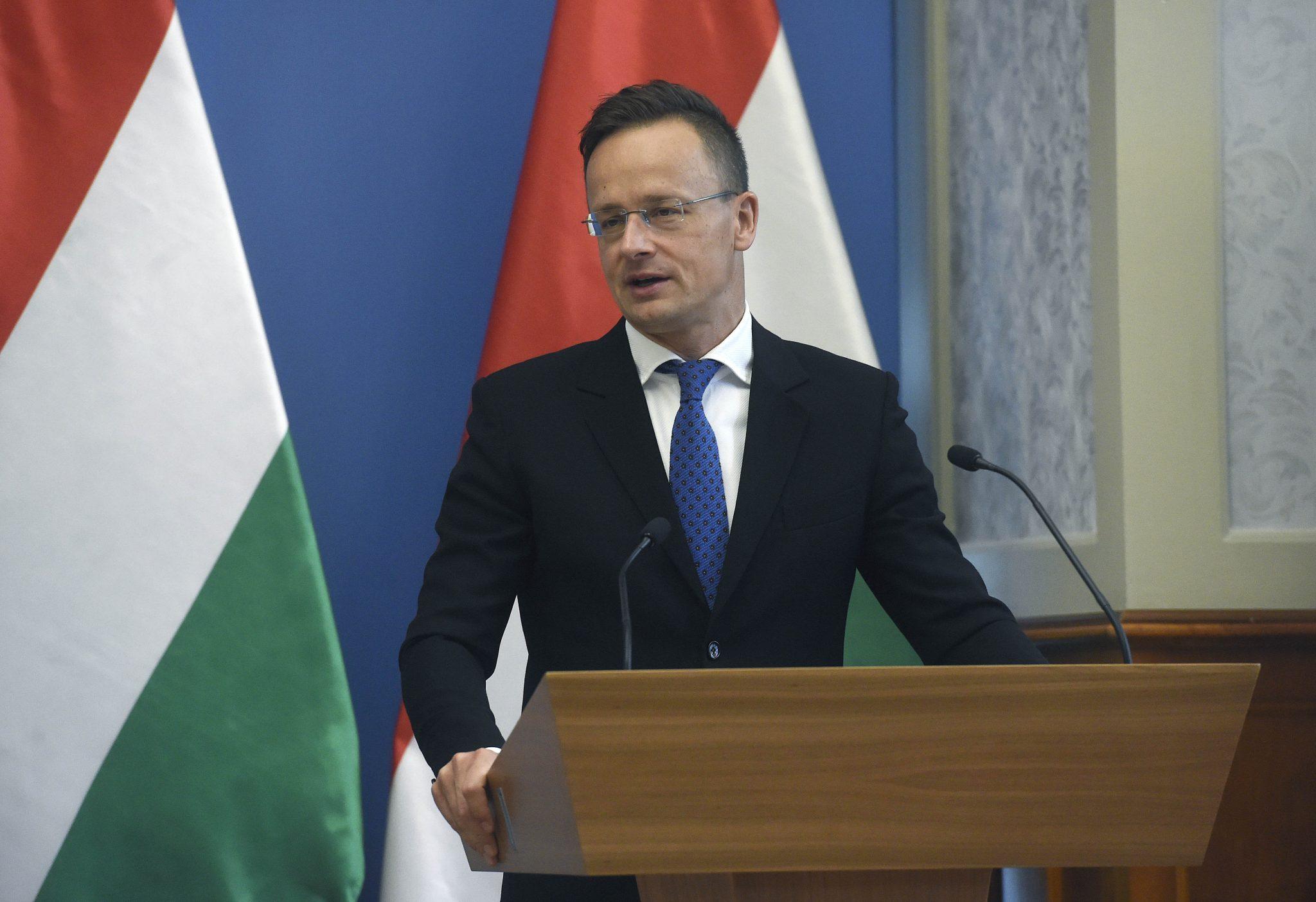 Coronavirus: Szijjártó Holds Consultations with ICRC President post's picture