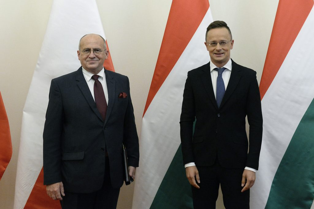 Hungary and Poland to Set Up Joint Institute for Comparative Law against 'Suppression of Opinions by Liberal Ideology' post's picture