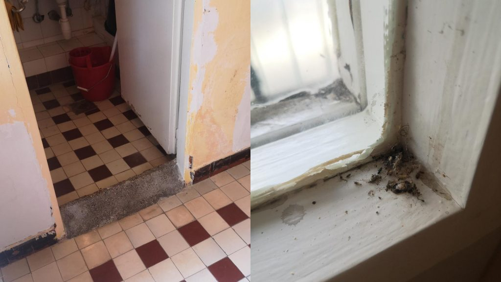 Photos Emerge of Terrible Conditions in Some Hospitals' Coronavirus Departments post's picture