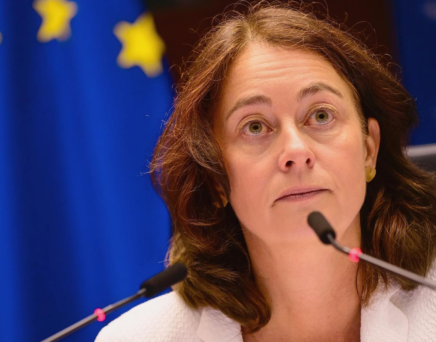 Hungarian Press Roundup: EP Deputy Speaker Demands Rule of Law Sanctions post's picture