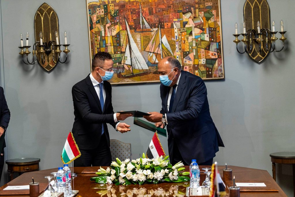 Foreign Minister Hails Egypt Rolling Stock Order, Economic Cooperation post's picture