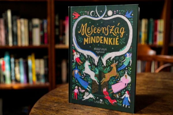 Controversial Minority-Focused Fairytale Book's Publisher Censured for 'Misleading Customers' post's picture