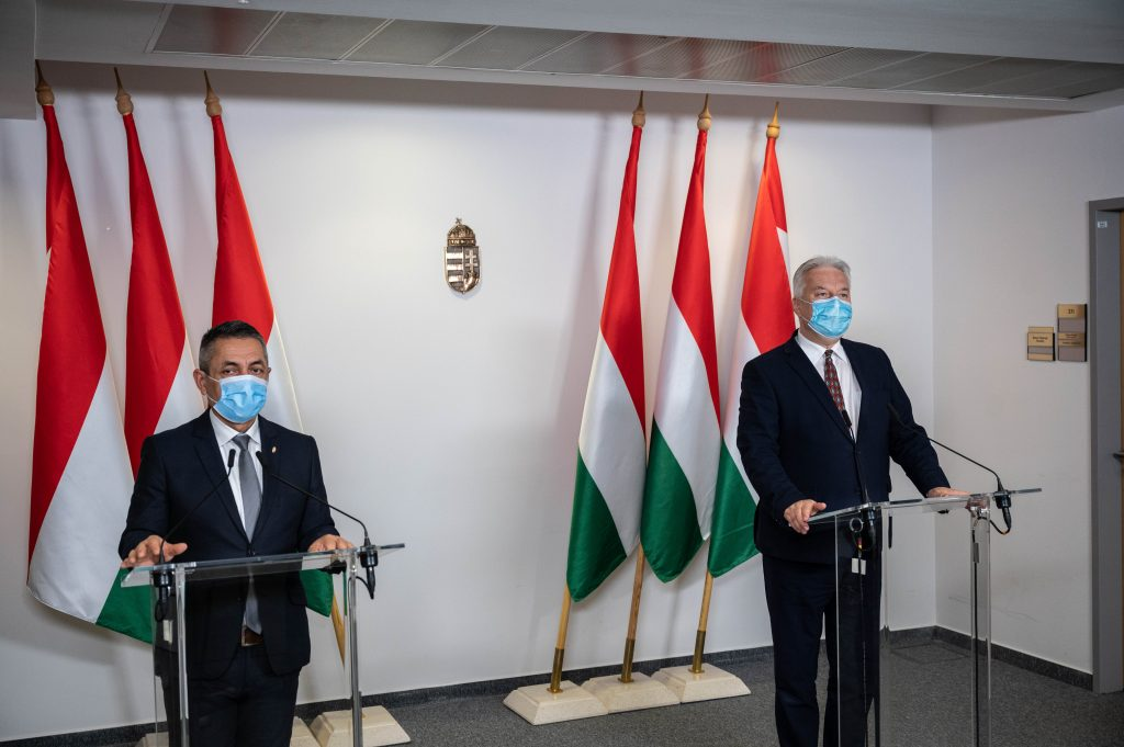 Máért/Diaspora Council: '2021 should be the year of national renewal' post's picture