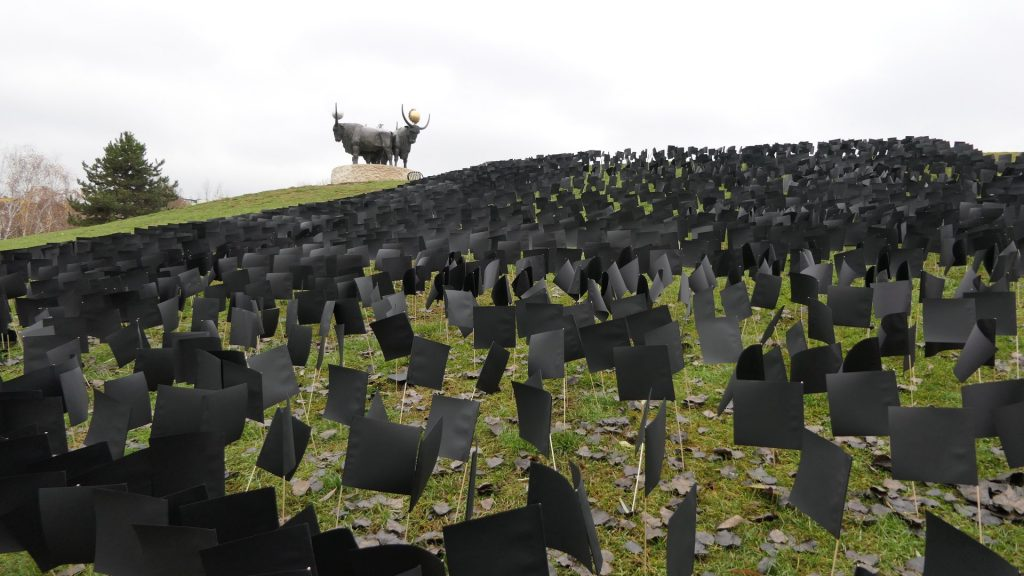 DK Displays 6,000 Black Flags to Remember Coronavirus Victims while Criticizing Gov't post's picture
