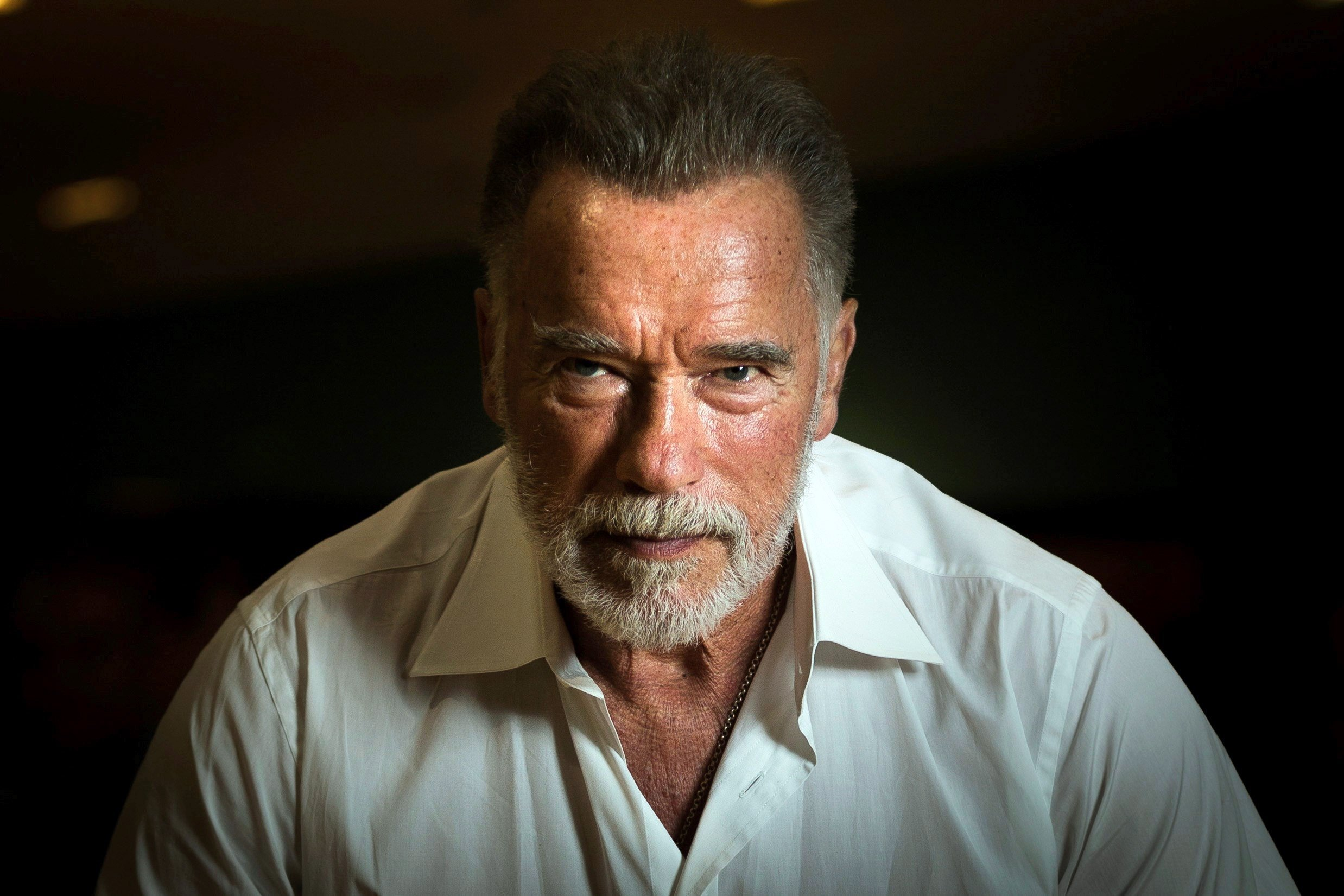 Schwarzenegger Campaigns for Hungarian Gyms to Reopen with Precautions