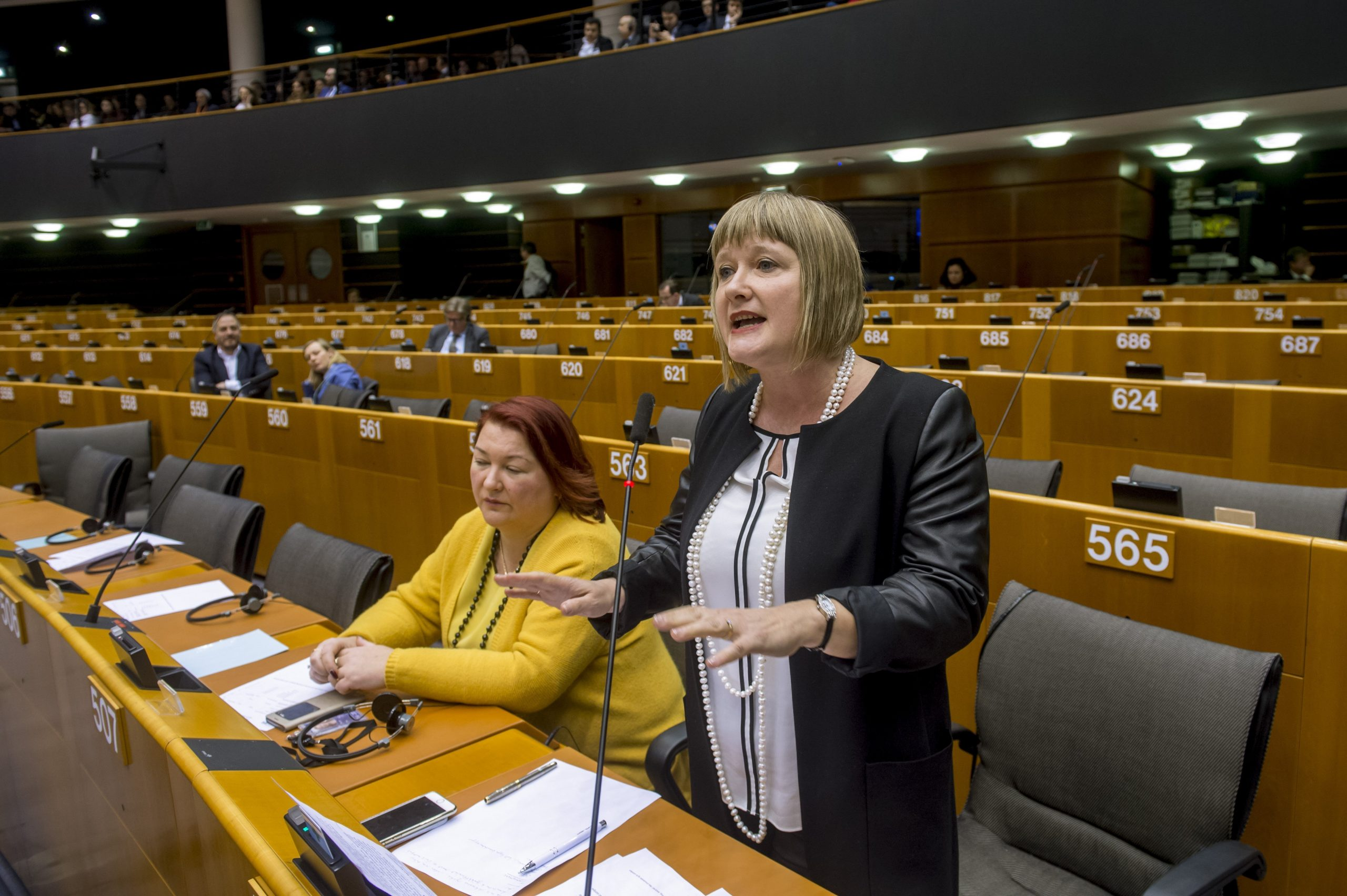 Minority SafePack: Hungary MEPs Urge Stronger EC Support for Protection of Nat'l Minorities