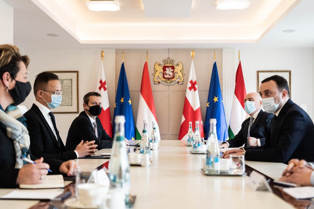 Foreign Minister Discusses EU Integration with Georgia Counterpart post's picture