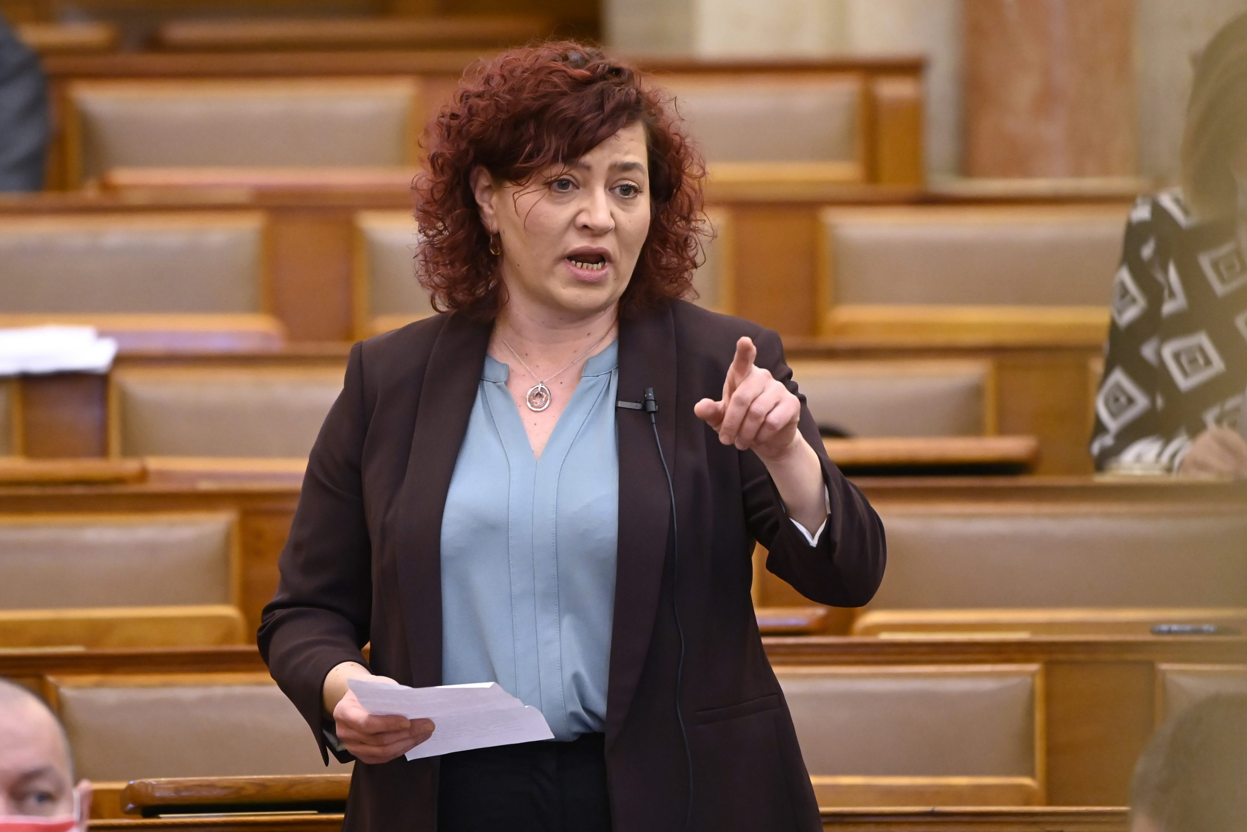 Opposition Parties Initiate Alternative Anti-Pedophilia Law Proposals