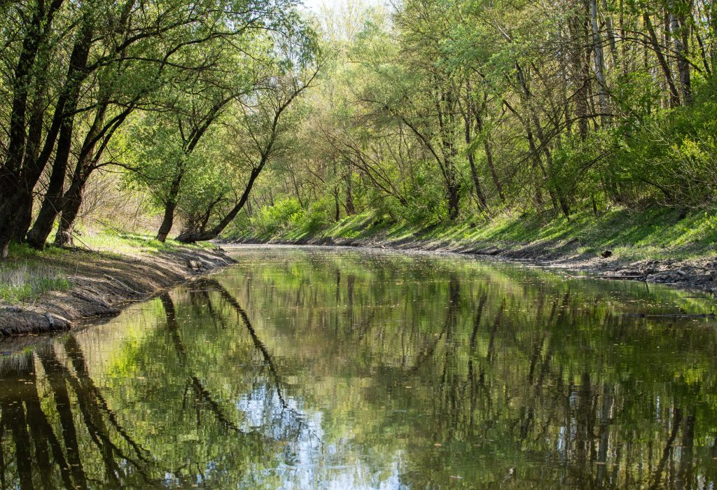 Call for Environmental Awareness on Day of Hungarian Nature post's picture