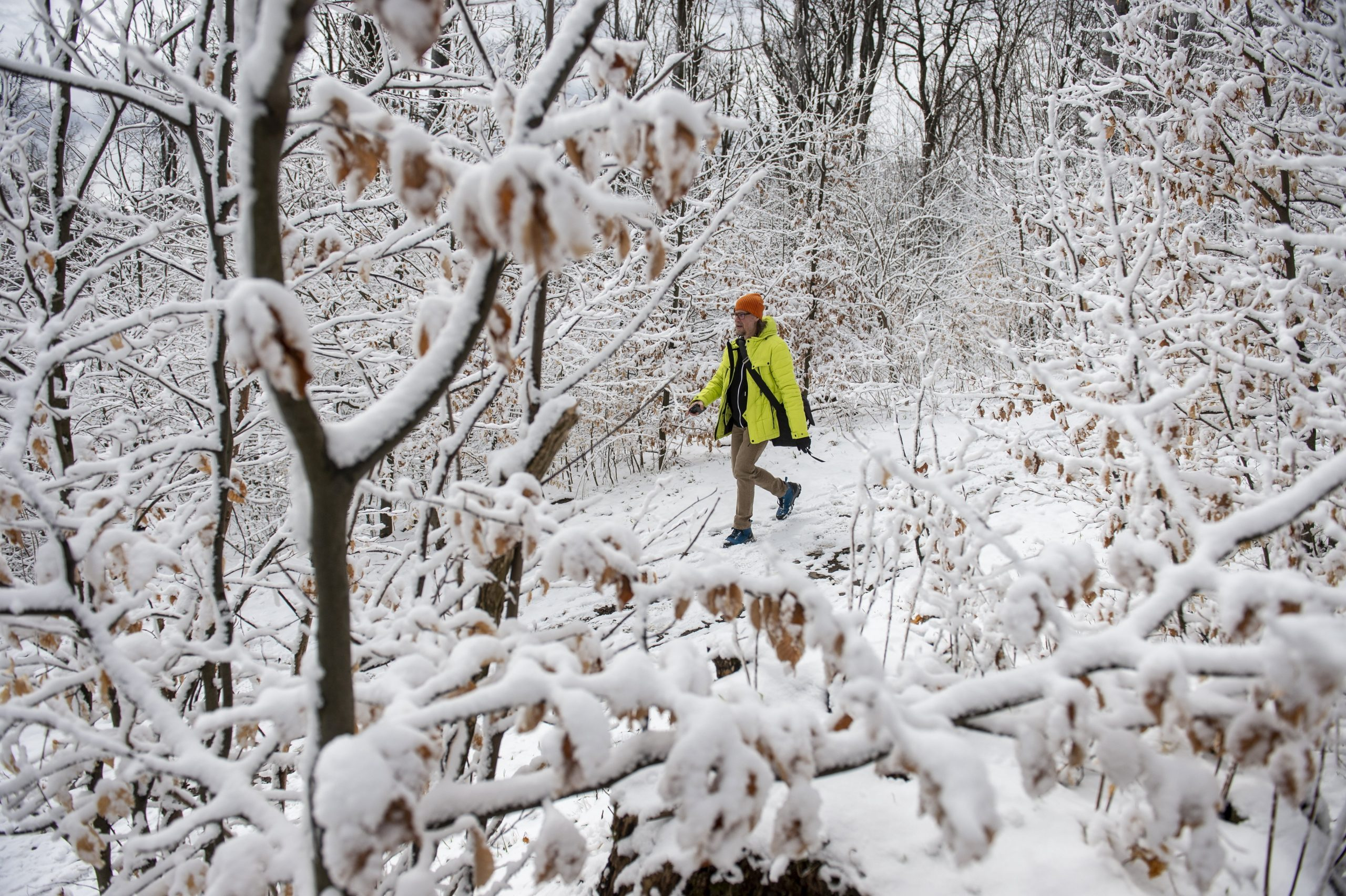 Photos of Hungary's Snowy Winter Wonderland... In April