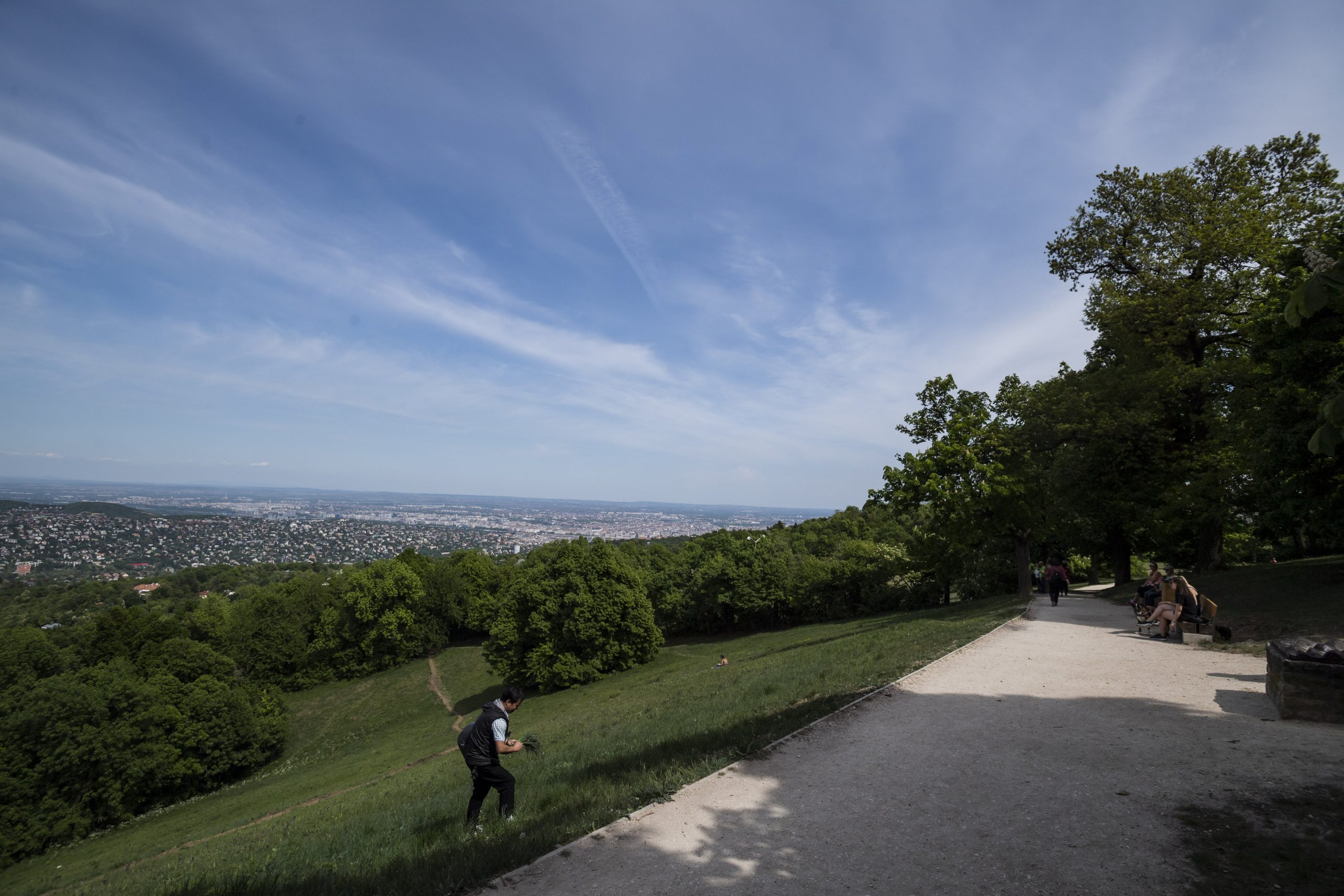 Normafa, Budapest's Popular Hiking Destination Under Renovation to Be 'More Comfortable' for People