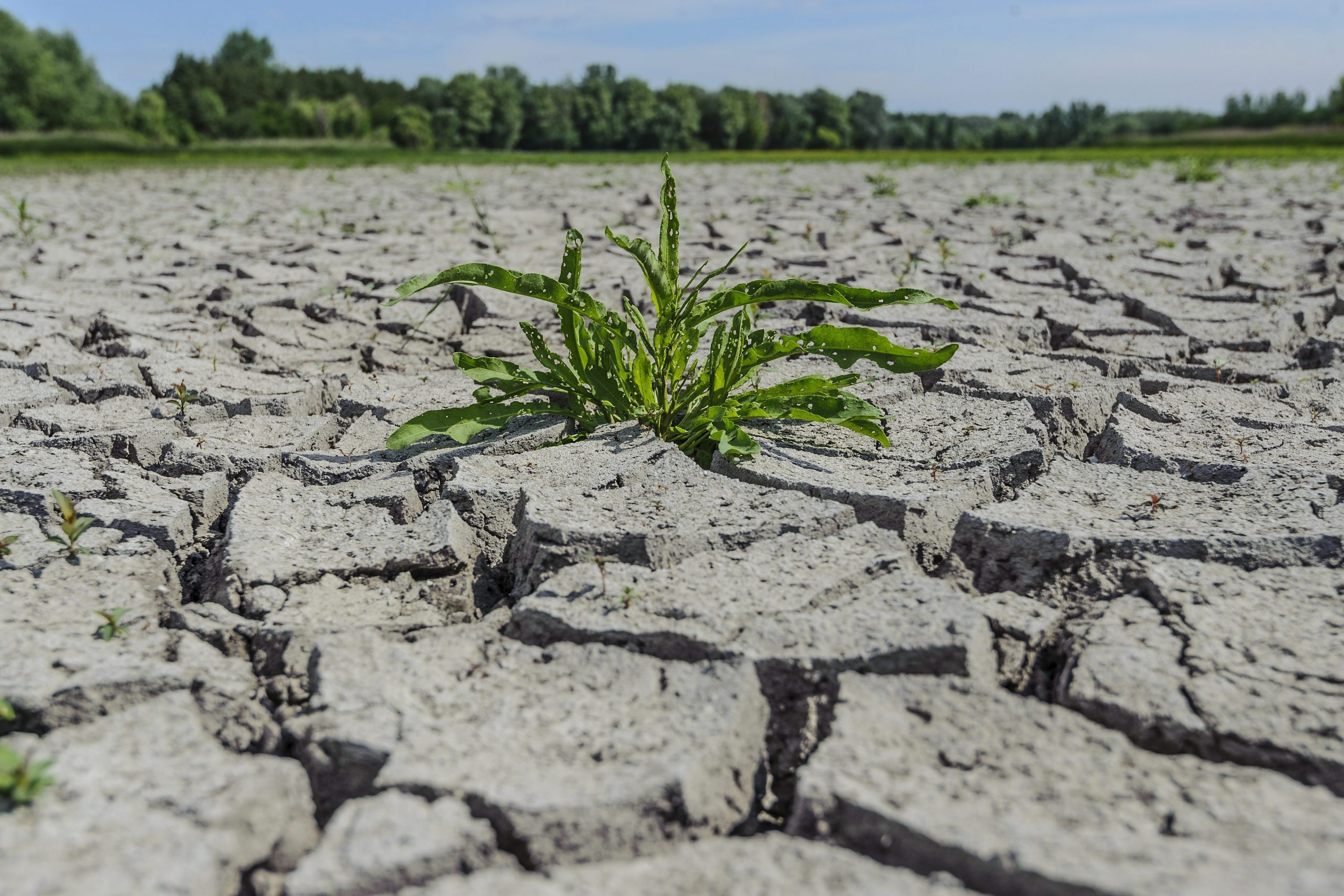 Hungary Passes its Earth Overshoot Day
