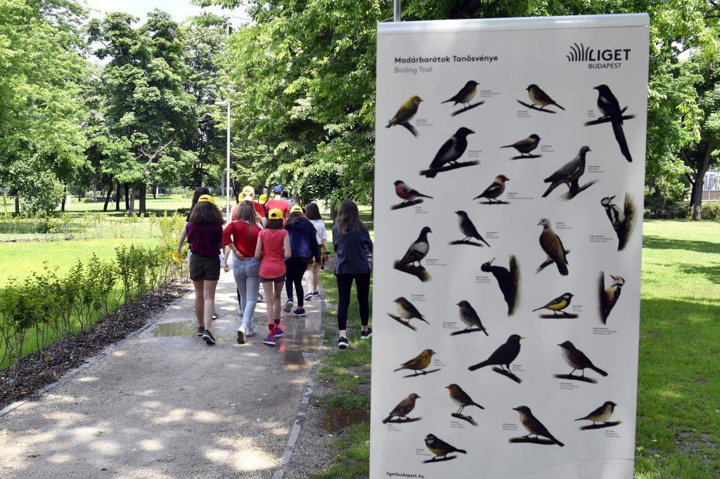 Trail of Bird Lovers Inaugurated in City Park post's picture
