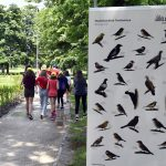 Trail of Bird Lovers Inaugurated in City Park