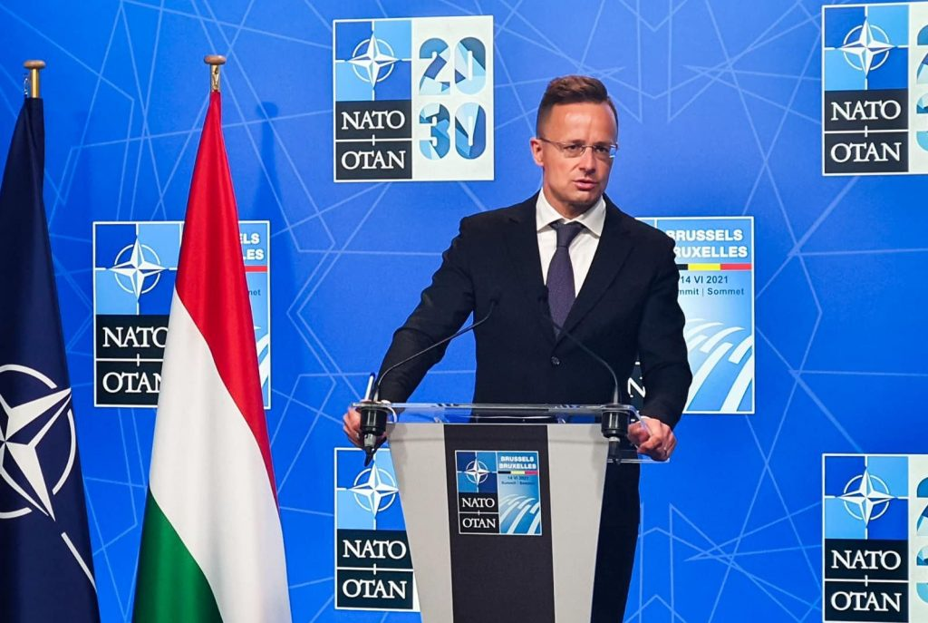 Foreign Minister: NATO Withdrawal from Afghanistan Raises Spectre of New Migration Waves post's picture