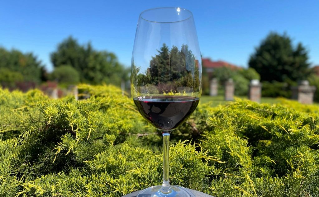 Hungarian Red Wine Receives Prestigious 'Grand Gold Medal Revelation Red Wine Award' post's picture