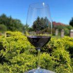 Hungarian Red Wine Receives Prestigious 'Grand Gold Medal Revelation Red Wine Award'