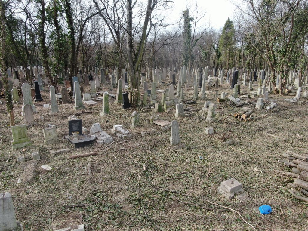 International Volunteers to Clean up Budapest Jewish Cemetery post's picture