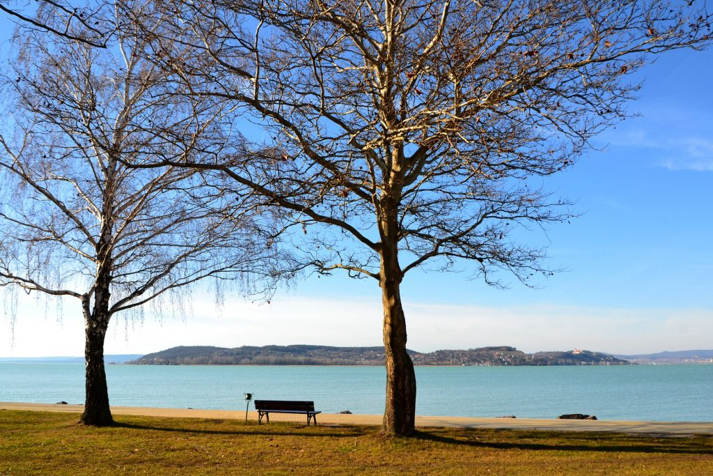 Exciting Programs Worth Checking Out This Autumn at Lake Balaton post's picture