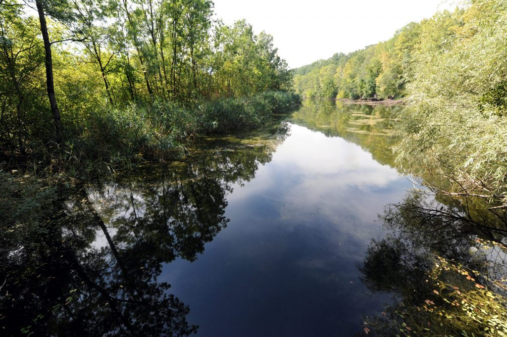 Hungary in World's First Five-Member Biosphere Reserve post's picture