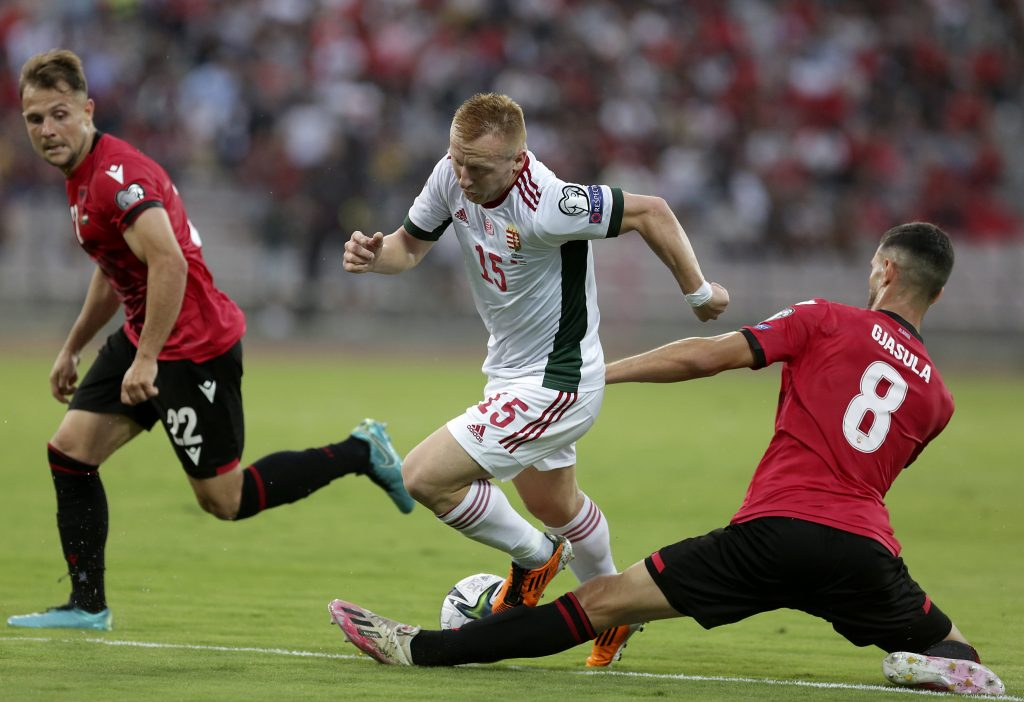 Historic Defeat in Albania Makes WC Qualification for National Team Extremely Difficult post's picture