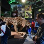 Hungaricum Gala Closes Out Hunting, Nature Expo