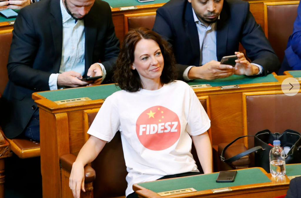 Ruling Parties Approve Tímea Szabó's Giant Fine for Mixing China Flag with Fidesz Logo post's picture