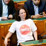 Ruling Parties Approve Tímea Szabó's Giant Fine for Mixing China Flag with Fidesz Logo